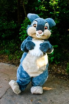 Thumper! I always thought he looked so cute and cuddly-I've never seen him as a costumed character, though :)