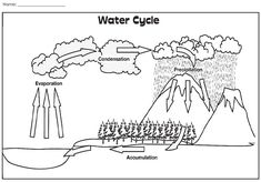 Check out this illustration of the water cycle!