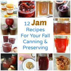 12 Jam Recipes For Your Fall Canning And Preserving