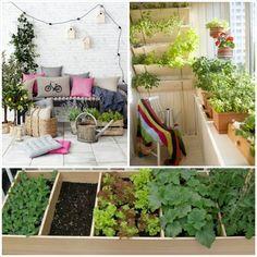 Entdecken Sie die facettenreiche Vielfalt der Balkonpflanzen! - http://freshideen.com/dekoration/balkonpflanzen.html
