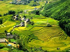 #Sapatours will take you through many beautiful sights from valleys to mountains and plain nature in colorful and typical costumes. Check out more @ http://welcomevietnamtoursvn.tumblr.com/post/146696833129/have-you-ever-discover-sapa-tours-to-fill-the