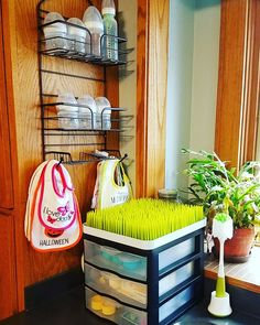 Kitchen storage for bottles, bibs and feeding accessories.