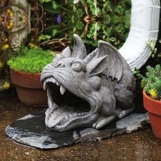 Gargoyle Statue Down Spout Cover by Gifted Living, http://www.amazon.ca/dp/B00GHW4QGO/ref=cm_sw_r_pi_dp_7NLetb0EPT4MQ