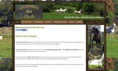Création site web – Pensions pour chevaux Ecurie des Lilas