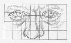 Drawing Eyes Drawing Noses and Eyes Demo, Step 1 Art Drawings Sketches, Easy Drawings, Pencil Drawings, Realistic Drawings, Pencil Art, Michael Johnson, Art Clipart, Watercolor Inspiration, Fantasy Sketch