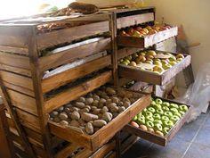 garden veggie storage