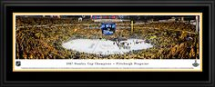 2017 Stanley Cup Panoramic Picture