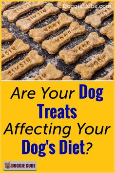 Dog treats can adversely affect your dog's diet. The types of treats used is important. Whether it's homemade, DIY or purchased from the stores, you must ensure they are healthy for your dog. Here're some tips to help you choose the right dog treats.