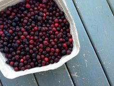 The Fruits of our Labour: Saskatoon Crumb Pie Saskatoon Berry Recipe, Pick Your Own Fruit, Homemade Pie, Berries, Recipes, Food, Essen, Bury, Eten