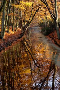 Deep Waters....autumn morning