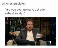 "In the words of Sebastian Stan, ""I honestly don't know. Sebastian Stan, Marvel Memes, Marvel Dc, Bae, James Buchanan, Bucky Barnes, Winter Soldier, Marvel Cinematic Universe, My Idol"
