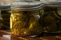 Photo: Dill Pickles Canning in Wide Mouth Mason Jars  - Food Photography Print Postcard from @Laura Watt