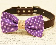 Purple Dog Bow Tie, Bow attached to brown dog collar, Country Rustic wedding, Burlap wedding, Purple pet wedding accessory, dog lovers, gift