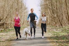 Every one wids to become fit and slim. People need to follow healthy basic rule to maintain them active and energetic. Please read this article post in detail.