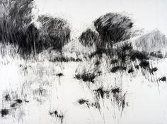Hannah Woodman: Garden Drawings : Kestle Barton