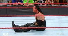 Undertaker Roman Regins, Undertaker Wwe, Mark Williams, Mma, Martial Arts, Muscle, Sports, Wrestling, Hs Sports