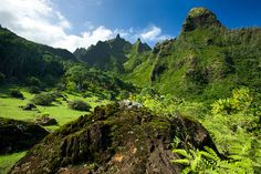 Beautiful Limahuli Gardens on the northern side of Kauai, the peaks are famous for the movie Bali Hai filmed in the area. Description from flickr.com. I searched for this on bing.com/images