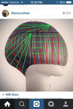 Jason Reyes cut diagram