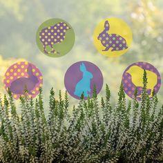 Spring animals - removable window decals, design by lepeeto Spring Animals, Spring Is Coming, Window Decals, Windows, Design, Window, Window Stickers, Ramen
