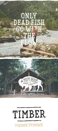 Timber Font on Behance
