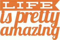 Silhouette Online Store: simple stories-life is pretty amazing