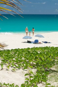 walking on beach in St. Maarten Family walking on beach in St. Maarten, The Caribbean. Source: Fabi FliervoetFamily walking on beach in St. Maarten, The Caribbean. Vacation Places, Dream Vacations, Vacation Spots, Places To Travel, Places To See, Vacation Rentals, Beautiful Islands, Beautiful Beaches, Photo Guadeloupe