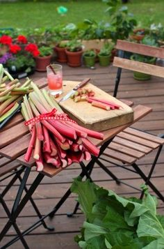 Everything you always wanted to know about #rhubarb. #vegetables #veggies