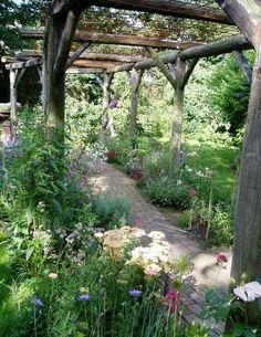 Cottage Garden Design, Garden Landscape Design, Back Gardens, Outdoor Gardens, Wisteria Plant, Gazebos, Arbors, Rustic Pergola, Cedar Pergola
