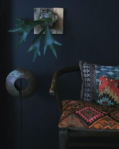 """""""#staghorn plant , turkish #kilim pillows, indian #kantha pillow, african currency, chinese horseshoe chair, #textiles"""""""