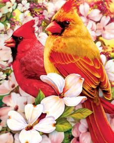 It's new and beautiful! Springtime Cardinals @ http://www.springbok-puzzles.com/category/alzheimers-puzzles#  #jigsawpuzzles, #gardens