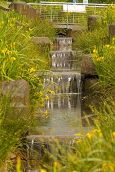 "The Rain Garden is a man-made ""waterfall"" that funnels water runoff from the 9-acre expansion roof to a series of planted water basins and basalt spillways where native grasses and landscape vegetation encourage natural infiltration of the water into the soil. Photo: Bruce Forster"