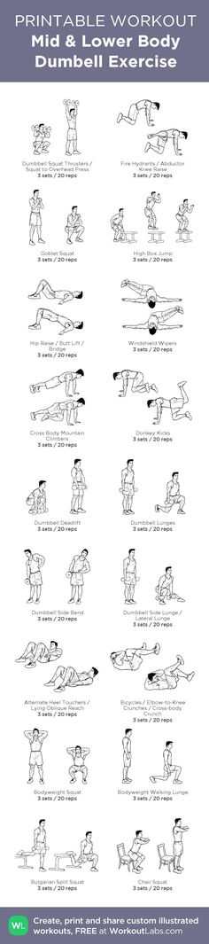 nice Mid & Lower Body Dumbell Exercise