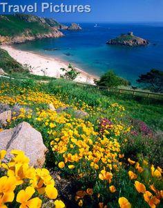 Portelet Bay, Jersey, Channel Islands, UK.