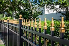 Custom aluminum fence design with gold finials and butterfly scrolls Types Of Fences, Pet Boarding, Wrought Iron Fences, Aluminum Fence, Stair Steps, Gold Tips, Mossy Oak, Fence Design, Different Styles