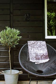 seasons of my home In my garden gardenchair & olive