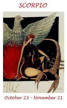 Scorpio Zodiac Greeting Card by zodiac on Etsy