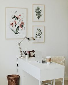 Set of botanical posters Scandinavian collection 1 pc Pea Flower 50x 70cm 1 pc Eucalyptus 30x40 cm 1 pc Cornflower 30x40 cm Scandinavian Collection is a compilation of three botanical posters. The subtle character of this collection will perfectly complement the decor of the