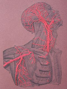 Embroidered A5 Notebook / Anatomy / Blood by FabulousCatPapers