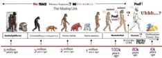 Time line of the evolution of man