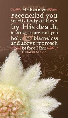 Colossians 1:2