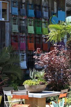 colorful chairs and succulent pot at flora grubb