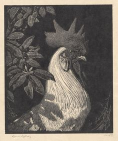 Sir Lionel Lindsay, woodcut, 'The Emporer or the white Cock' Engraving Illustration, Illustration Art, Mc Escher Art, Linocut Prints, Art Prints, Block Prints, Black And White Sketches, Scratchboard, Art Journal Techniques