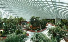 Gardens by the Bay, Grant Associates, Singapore
