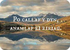 "Welsh: ""Po callaf y dyn, anamlaf ei eiriau.""Approximate pronunciation: poh cah-lahv uh dun, ah-nahm-lahv eye eh-ree-eyeTranslation: ""The wiser the man, the fewer his words. Welsh Sayings, Welsh Words, Welsh Tattoo, Learn Welsh, Welsh Language, Prison Officer, Cymru, Writing Poetry, Live Your Life"