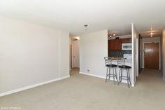 555 W Cornelia Ave #1205 - Living Area / Kitchen