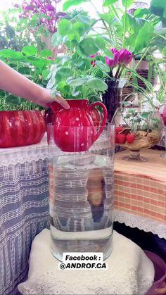 Jewelry Design Drawing, Outdoor Garden Decor, Art Therapy Activities, Fun Diy Crafts, Garden Trellis, Water Plants, Tropical Garden, Bottle Crafts, Plant Care