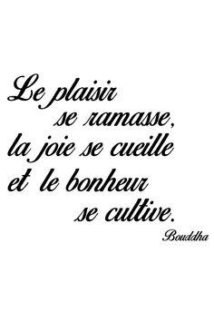 Vente STICKERS / 24345 / Lettrage / Citations en français / Sticker Le Bonheur se cultive Noir