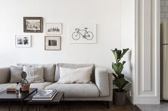 home tours on a roll