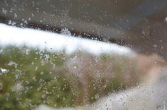Schimmelbildung zwischen der Doppelverglasung im Fenster