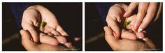 amor, Anne e Fernando, Baby, Blumenau, Corupá, ensaio externo, família, fotógrafo jaraguá do sul, gestante, Guaramirim, João Arthur, Joinville, mãe de menino, Milene Langa Fotografia, Nikon, Pai de Menino, Parque Malwee, Pomerode, Santa Catarina, União